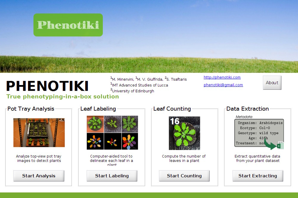 Phenotiki analysis software